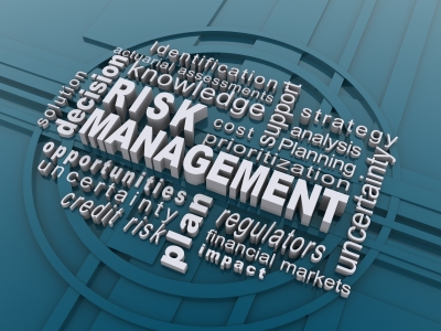 Improving the Effectiveness and Maturity of Risk Management Processes