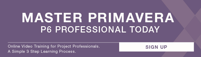 Primavera P6 Professional Online Video Training