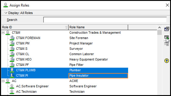 Assigning Multiple Roles To A Resource In Primavera P6 Fig 3
